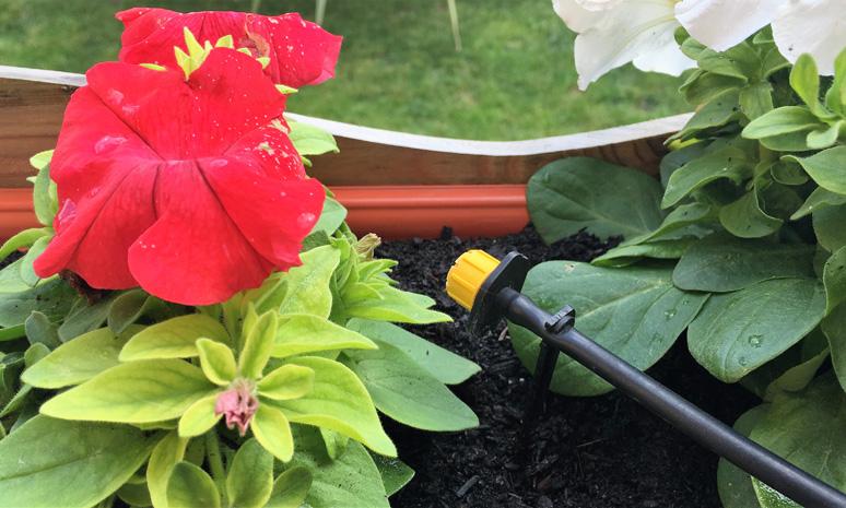 Installazione impianti irrigazione giardini e terrazze for Valvole irrigazione giardino